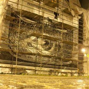 Dzisiaj wernisaż muralu Jakuba Woynarowskiego wSłupsku